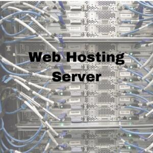 Web Hosting Server 300x300 - Let me show Web Conection