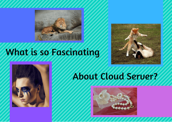 What Is So Fascinating about cloud server