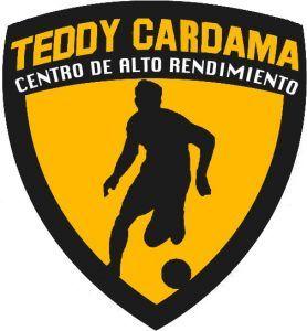 LOGO_TEDDY_CARDAMA